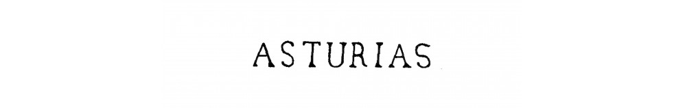 DP17 ASTURIAS