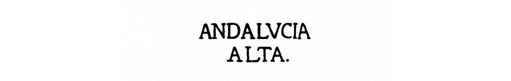 DP24 ANDALUCIA ALTA