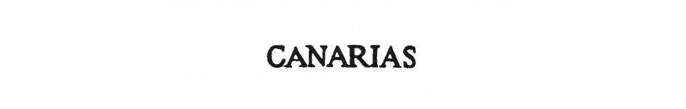 DP29 ISLAS CANARIAS